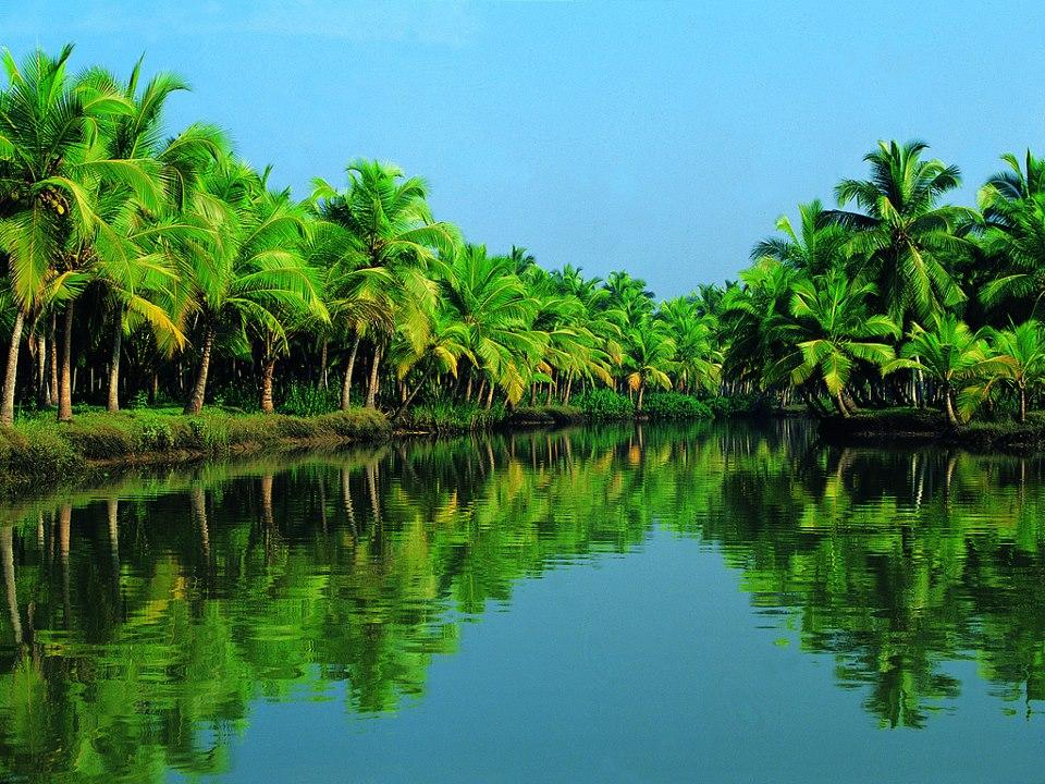Back Waters - Kerala Tourism